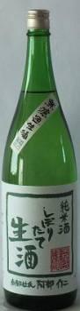 森乃菊川 純米 しぼりたて生原酒1