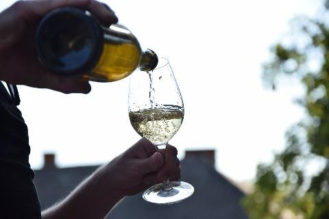 ワイナリーでワインを注ぐ
